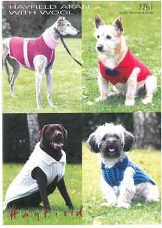 vintage knitting dogs - Google Search