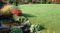 Realizace zahrady - Kopřivnice Outdoor Decor, Plants, Plant, Planets