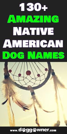 Whether it is your heritage or you want one of these beautiful names there are plenty of native American dog names listed below to name your new dog after. #nativeamericandognames #dognames