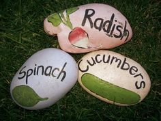 paint rocks to mark whats in the garden...great idea
