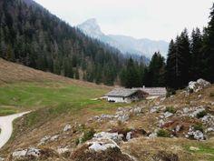 Vom Taubensee hinauf zur Mordau - Berchtesgadener Land Blog
