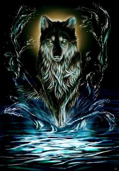 Wolf Images, Wolf Photos, Wolf Pictures, Pictures To Draw, Wolf Wallpaper, Animal Wallpaper, Scary Wallpaper, Anime Wolf, Beautiful Wolves