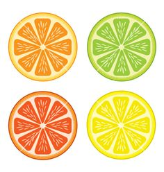 Illustration of Set of citrus fruit - lemon, orange, grapefruit and lime. vector art, clipart and stock vectors. Fruit Party, Fruit Trees In Containers, Lemon Crafts, Kawaii Fruit, To Do Planner, Lemon Art, Fruit Cartoon, Fruit Vector, Fruit Print