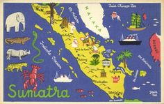 It shows a beautiful map of the island and its raw materials. So it is about 60 yearsOLD. However a slight crease on the right side it does not affect the picture (see scan) and it is still a great collectable. Travel Maps, Travel Posters, Pictorial Maps, Indonesian Art, Animal Doodles, Tourist Map, Vintage Posters, Vintage Art, Travel Illustration