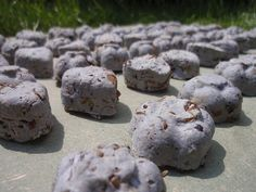 Make your own eco-friendly seed bomb with recycled paper pulp