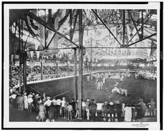 Cattle show at the old site of the KY State Fair which is now the Catepilliar Headquarters in Louisville.