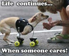 Life continues...when some cares!