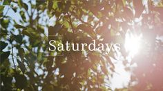 Kinfolk Saturdays: Hosting a Flower Potluck on Vimeo