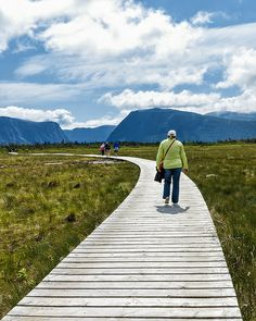 Erika heads toward Western Brook Pond fjord in Gros Morne National Park. View the rest of the pics in this series in my Newfoundland Trip set. Newfoundland Canada, Newfoundland And Labrador, East Coast Canada, Gros Morne, Atlantic Canada, Prince Edward Island, New Brunswick, Canada Travel, Nova Scotia