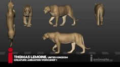 The iAnimate Member Showcase represents some of the best animation from the latest block of our Creature animation workshop. Enroll now at www.ianimate.net Find us on Facebook: facebook.com/iAnimate.net Follow us on Twitter: twitter.com/@iAnimate Animation Mentor, Animation Tools, Animation Reference, Real Time Strategy, Anatomy Drawing, Cool Animations, Animal Sketches, Animated Gif, Game Art