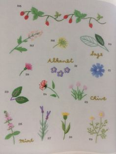 Herbs in embroidery