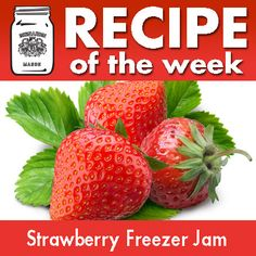 Just crush, stir and freeze! Nothing could be easier or as delicious as this Strawberry Freezer Jam! Jelly Recipes, New Recipes, Strawberry Freezer Jam, Jam And Jelly, Food Cravings, Frozen, Canning, Fruit, Easy