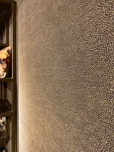 Metallic Wallpaper, Wall Wallpaper, Bedroom Wall Colors, Wall Finishes, Drawing Room, Bathroom Interior Design, Home Bedroom, Wall Decor, House Styles