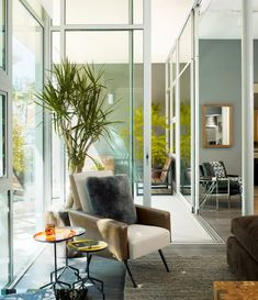 Homedit Indoor House Plants You Can Decorate With Interior Design Living Room Modern
