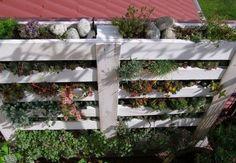 Un mini jardin avec une palette! 20 idées pour vous inspirer…
