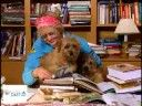 Mary Pope Osborne Interview: The Magic Tree House