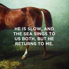 the scorpio races quotes / classical paintings pegwell bay, kent – a recollection of october william dyce horse in a stable, nikolai sverchkov Where The Sun Sets, The Scorpio Races, Racing Quotes, Maggie Stiefvater, Favorite Book Quotes, Cartoon Books, Book Fandoms, Signs, Love Songs