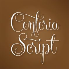 """Centeria Script for wedding programs, menus, other signage - Find great wedding ideas in the PDF """"663 Must-Have Wedding Ideas"""" at www.oliverink.etsy.com"""