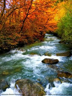 Outdoors Discover What a beautiful fall scene. All Nature Amazing Nature Autumn Nature Nature Pictures Beautiful Pictures Beautiful World Beautiful Places Beautiful Nature Scenes Autumn Scenes Beautiful World, Beautiful Places, Beautiful Pictures, All Nature, Amazing Nature, Autumn Nature, Fall Pictures, Nature Pictures, Composition Photo