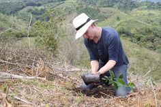 TW planting Typica in February 2015