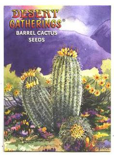 Barrel Cactus - These specimens are always cylindrical or barrel shaped and are usually among the largest cacti in the desert. They have prominent ribs and are fiercely armed with heavy spines. $1.99