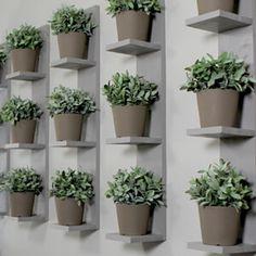 Wall-Mounted Plant Shelves