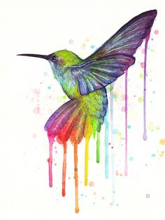 Hummingbird Watercolor Paintings | Hummingbird Rainbow Watercolor Art Print