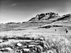 Trail Running South-Africa https://pbs.twimg.com/media/Bm4bH0tCIAA3vje.jpg:large  Source: https://twitter.com/TRAILza/status/463355525603024896