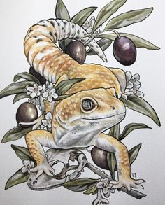 Leo + Olive Branch is part of drawings Girl Dress Fashion Sketches - inch print on textured paper Signed Ships flat between cardboard Cute Lizard, Cute Gecko, Art Inspiration Drawing, Art Inspo, Gecko Tattoo, Lizard Tattoo, Iguana Tattoo, Animal Drawings, Art Drawings