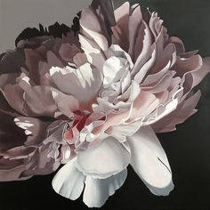 Peony Blush by Patricia Hillard. Paintings for Sale. Flower Painting Canvas, Watercolor Paintings, Canvas Art, Floral Paintings, Fleurs Diy, Plant Illustration, Fantastic Art, Abstract Flowers, Beautiful Paintings