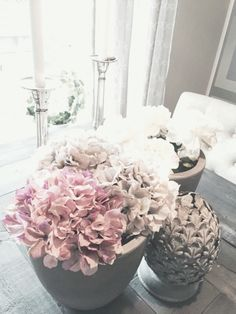 in love with these flowers..They are my favorite ✨