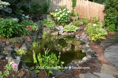 Small Water Ponds For Backyard | ... Backyard Ponds,Waterfalls & Watergardens by Creative Ponds