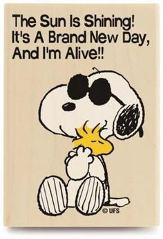 "Peanuts Snoopy & Woodstock""The Sun is Shining!It's a Brand New Day"" Rubber Stamp Peanuts Gang, Peanuts Cartoon, Charlie Brown And Snoopy, Peanuts Comics, Happy Wednesday Quotes, Wednesday Humor, Wonderful Wednesday, Wednesday Morning, Monday Tuesday"