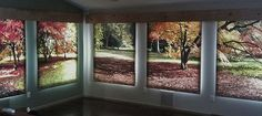 Vertical Mural Blinds Photo Roller Shades Your Design or Our Design | eBay
