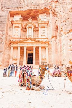 13 Things to Know Before You Go to Jordan