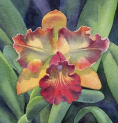 SPICY COLORS SOLD orchid floral watercolor painting, painting by artist Barbara Fox