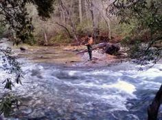 1000 images about toccoa river on pinterest rivers for Toccoa river fishing