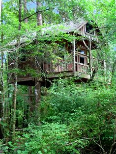 Edisto River Treehouses- Private river access for the treehouses allow you to come and go as you wish. Fully furnished. Sleeps 2-4. Tucked in the woods out of view of any other.   Nestled in the trees on the river's edge Located on its own private, gurgling creek.
