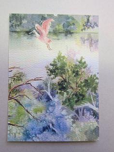 Spoonbill Flight ACEO watercolor print 388 by watercolorsNmore, $4.00