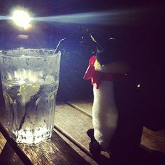 Leonard enjoyed drinks and danced in the moonlight in Greenwich last night, at the Gypsy Moth around the Cutty Sark.