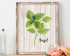 Kitchen art, basil, kitchen decor, herb print, basil print, kitchen print, home decor, kitchen wall art, art print, herbs art, botanical