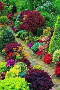 Wonderful garden!!