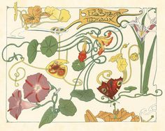 ART Nouveau ~ Botanical Art Print