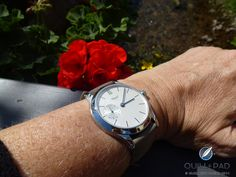 The Felix on the author's wrist in Durbach, Germany Dress Watches, Get Happy, Shots, Germany, Accessories, Deutsch, Ornament
