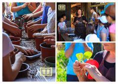 Festival do PROVE Terras de Santa Maria.  PROVE - Cabaz de produtos hortofrutícolas locais e da época. Entregue semanalmente ao consumidor pelo produtor. Em nome da qualidade e da sustentabilidade.