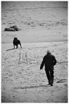 Gulpilhares [2012 - Gaia - Portugal] #fotografia #fotografias #photography #foto #fotos #photo #photos #local #locais #locals #europa #europe #pessoa #pessoas #persona #personas #people #praia #praias #playa #playas #beach #beaches #cão #cães #perro #perros #dog #dogs