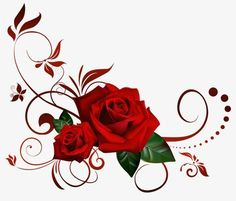 REd Rose PNG Flowers images and Clipart transparent background Red Rose Png, Red Roses, Rose Frame, Heart Frame, Art Floral, Flower Images, Flower Art, Art Mignon, Rose Vines