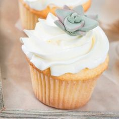 These charming DIY fondant succulents are adorable and edible!! Great for fiestas or just to impress your friends!