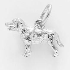 Rembrandt Labrador Retriever Charm $25 http://www.charmnjewelry.com/category/n250/sterling_silver-Dog_Charms.htm?returnurl #DOG