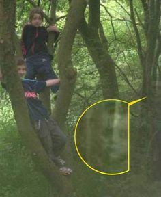 Michelle Mason spotted the ghost-child while looking at photos taken during a family day out in Cannock Chase, Staffordshire. The was 'freaked out' to see the dark-eyed apparition lurking near her children Sophia and.